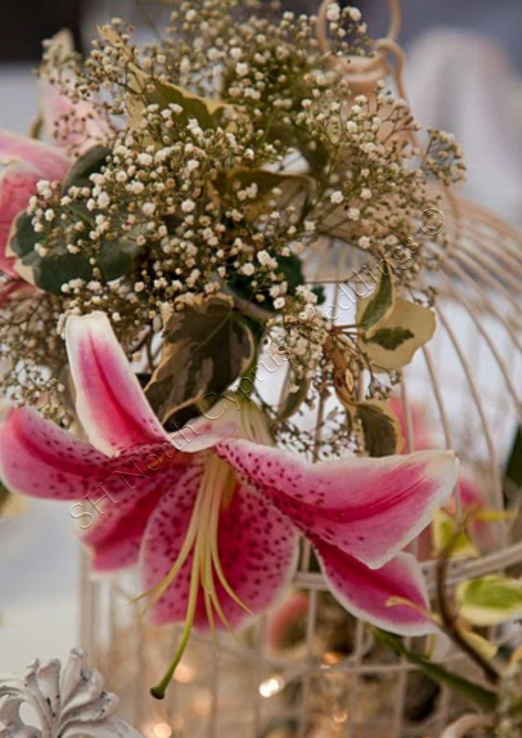 North Cyprus wedding flowers (73)