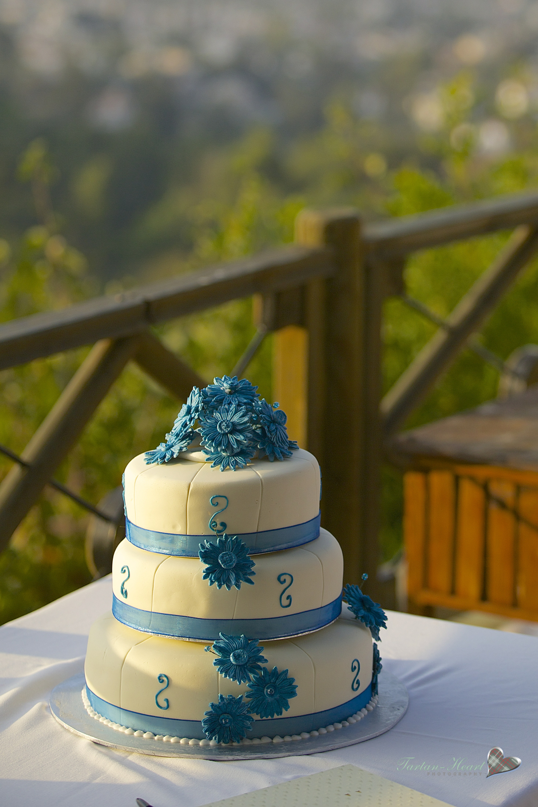 Wedding cakes in Northern Cyprus (53)