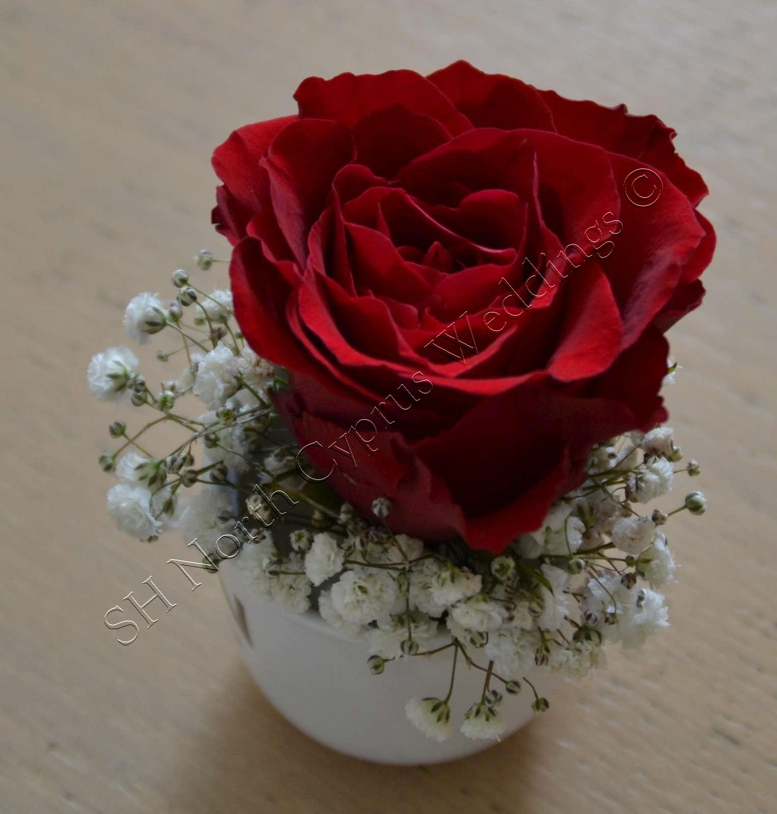 North Cyprus wedding flowers (90)