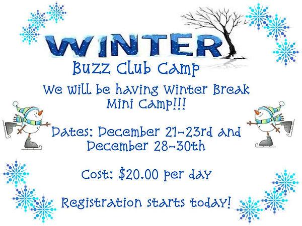 Winter Break Camp Flyer.jpg