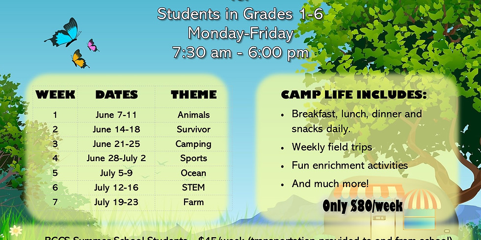 Buzz Club Summer Camp