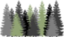 forest-310072__480.png