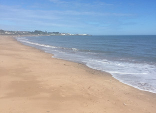 Beach Clean ~ Marine protection.