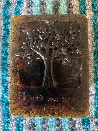 Organic Grapefruit, Lemon and Seaweed Exfoliating Tree of Life Soap