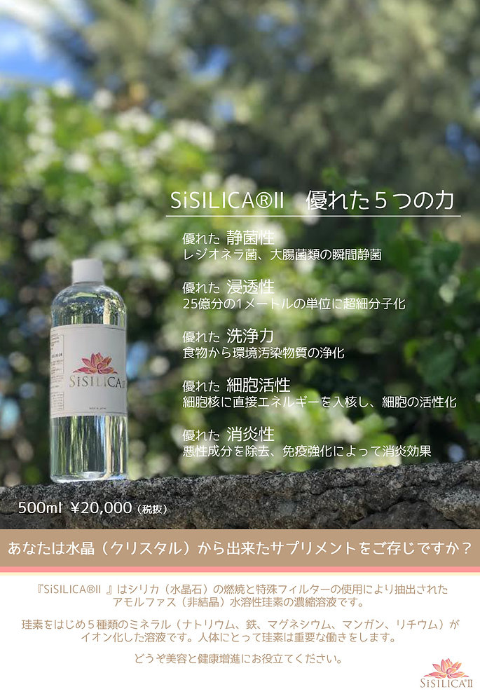 シシリカ【代理店用】-1.jpg