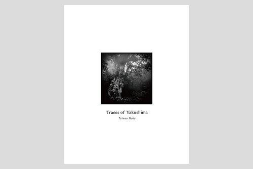 写真集「Traces of Yakushima」 サイン入り