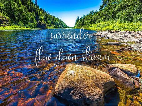 Choosing Surrender Over Struggle
