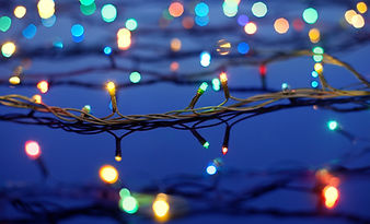 Christmas Lights on Trees