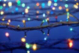 Les lumières de Noël sur les arbres