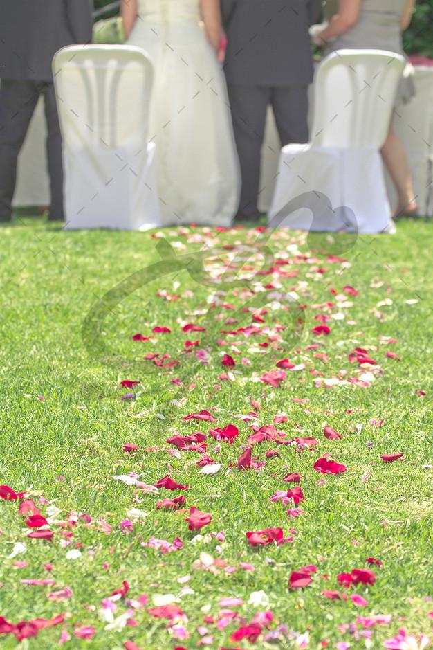 ceremonia2marca.jpg