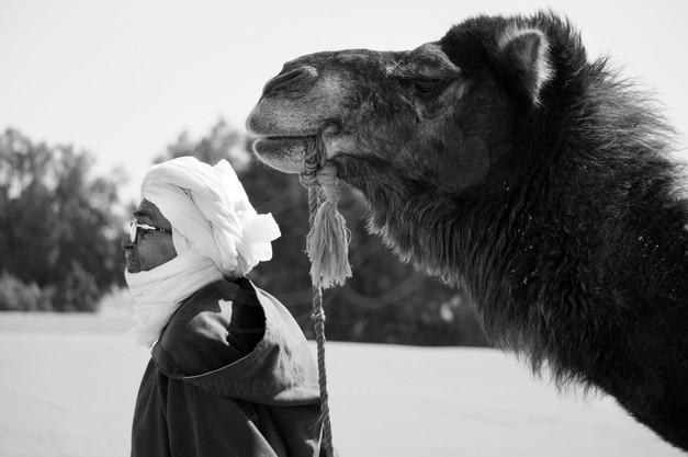camell marca.jpg