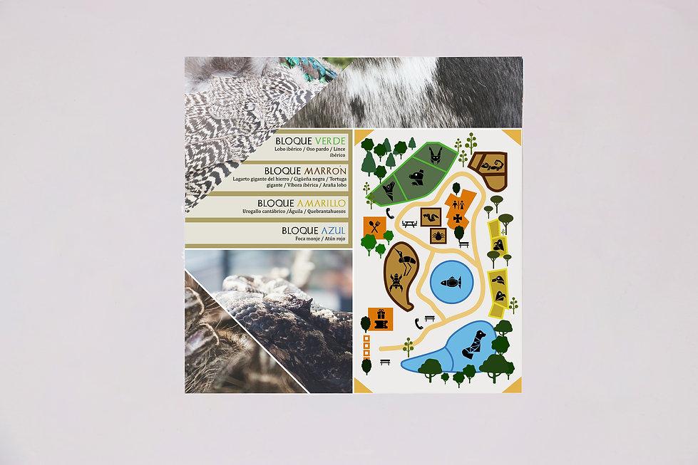 folleto1 zoo.jpg