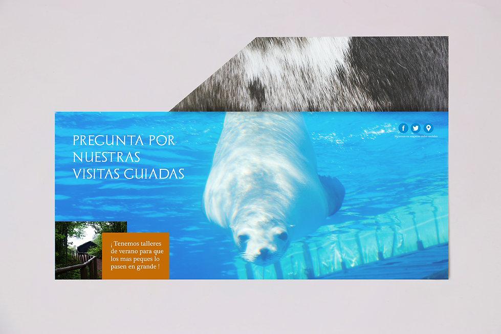 folleto2 zoo.jpg