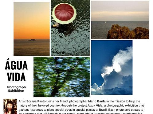 Água Vida Complete Collection - 5 Impressões Fine art / 5 Fine Art Prints