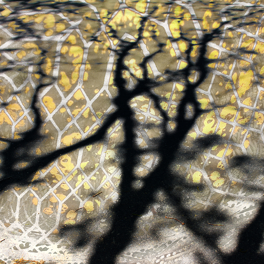 ADORADA_5_IMG_4064 arvore seca e amarelo PRINTWW
