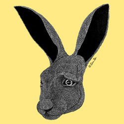 play rabbit2