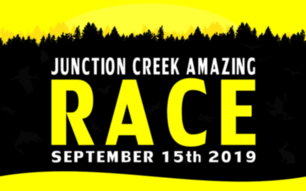 BANNER - Amazing Race 2019.png