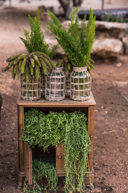 House of Green | Yahav Green | Haim Afriat | Neot Kedumim