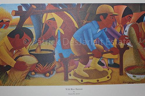 Wild Rice harvest - 1969