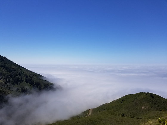 Higher Than The Clouds