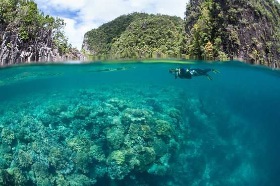 Dive in indonesia