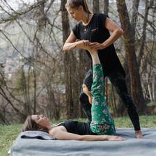 Wholeycow Massage
