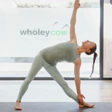 Wholeycow Studio