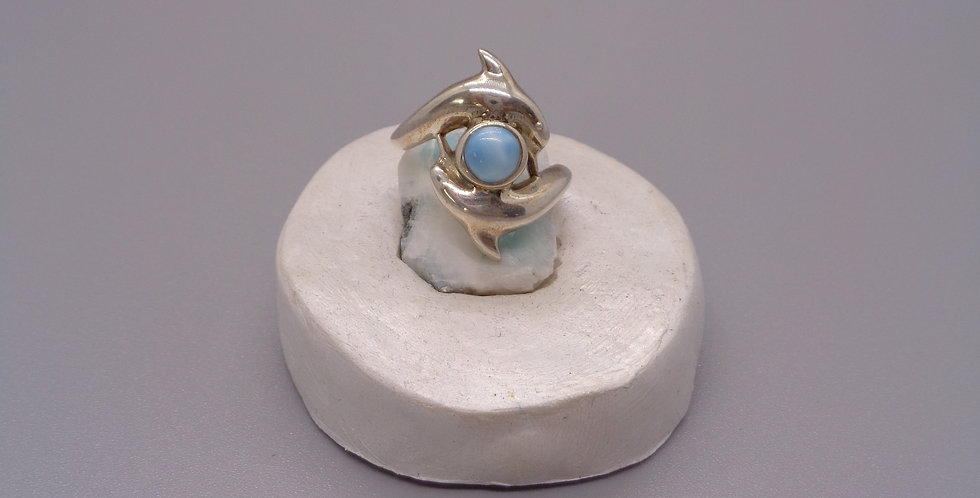 The Dolphin Dance Ring