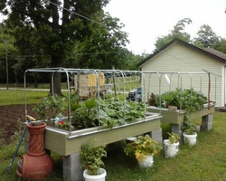 Grow Organically!