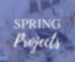 Project Gallery - Spring Projects.png