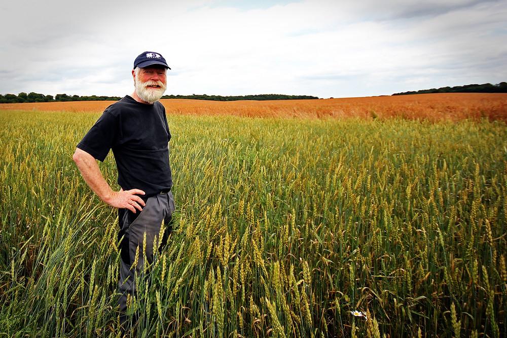 Symbolbild Landwirt auf Feld