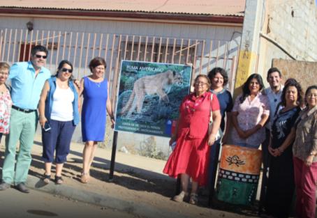EN EL PEÑÓN: Iniciativa de recolección de lavadoras combina reciclaje electrónico y patrimonio
