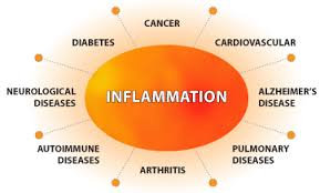 Kit 29: Inflammation