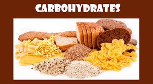Kit 33: Carbohydrate, Metabolism