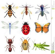Mini Treatment Kit 20: Insects