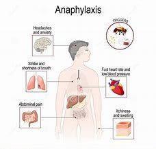 Kit 46: Anaphylactogens