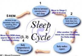 Mini Treatment Kit 44: Sleep Kit 1