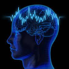 Kit 44: Brain Function Kit 3, Lyme Disease