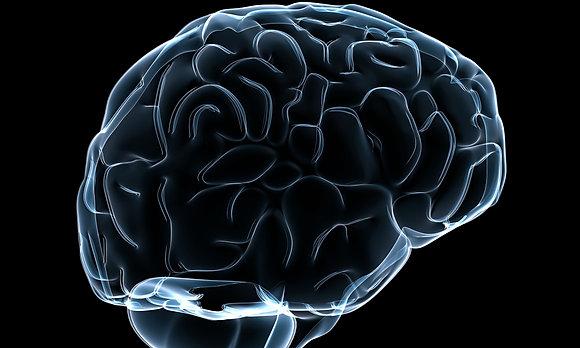 Kit 52: Brain Kit 3
