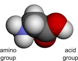 Mini Treatment Kit 7: Amino Acids