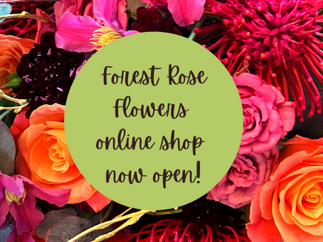 New website, and online shop!