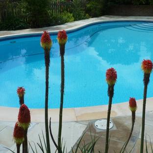 Swimming Pool Refurbishment Tonbridge