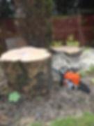 Stump Grinding Fulwood
