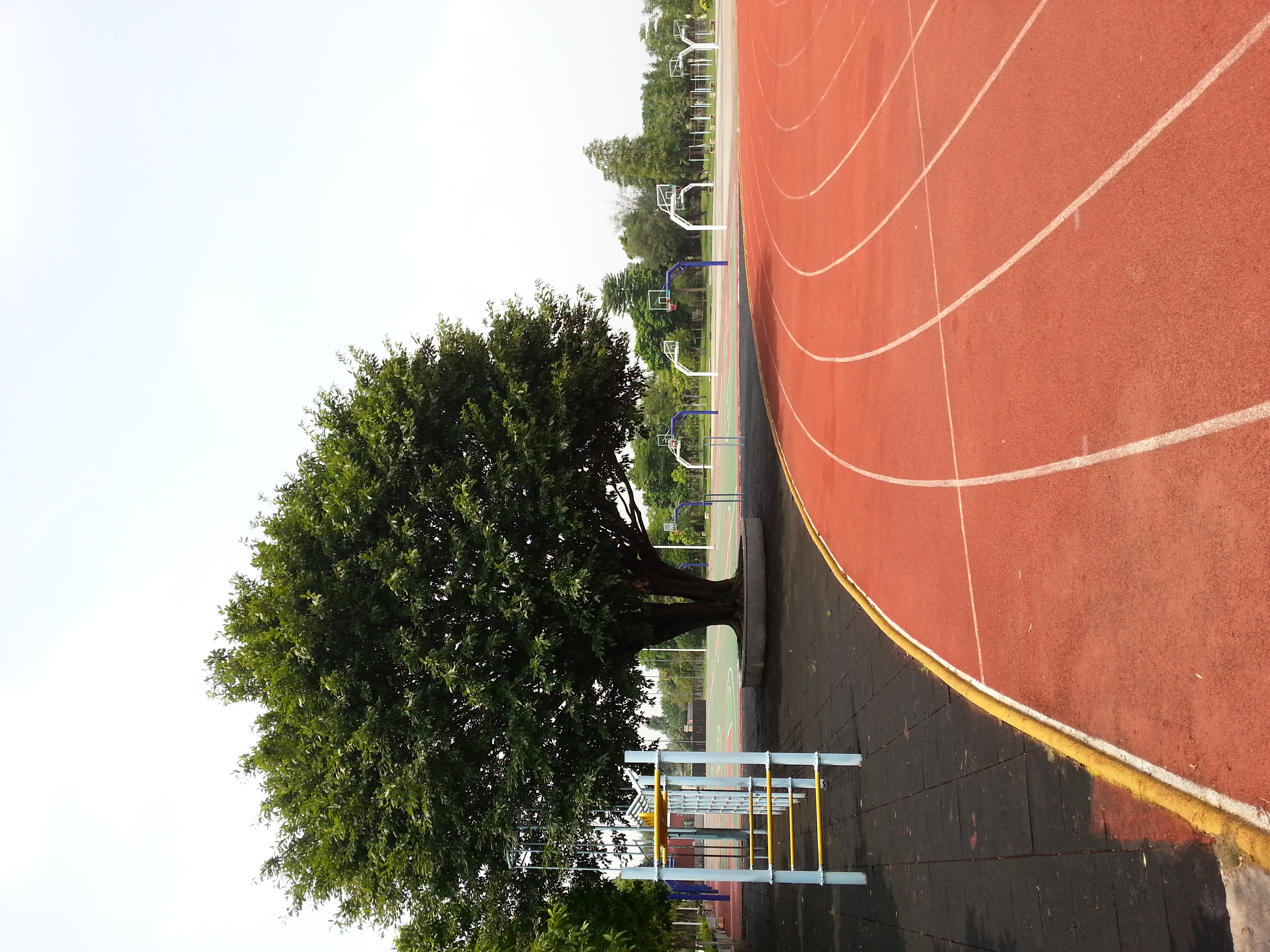 Track And Basketball Courts