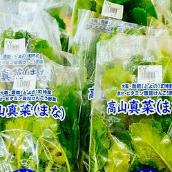 高山真菜.jpg