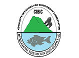 CIBIC official Logo.jpg