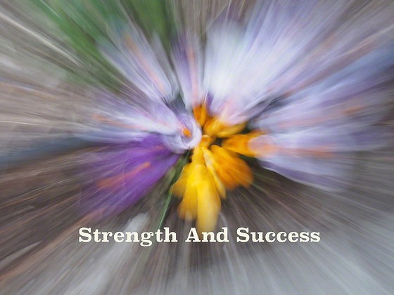 Strength and Success