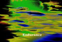 AG S1-023 Endurance