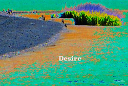 AG S1-015 Desire