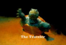 AG S1-012 The Traveler
